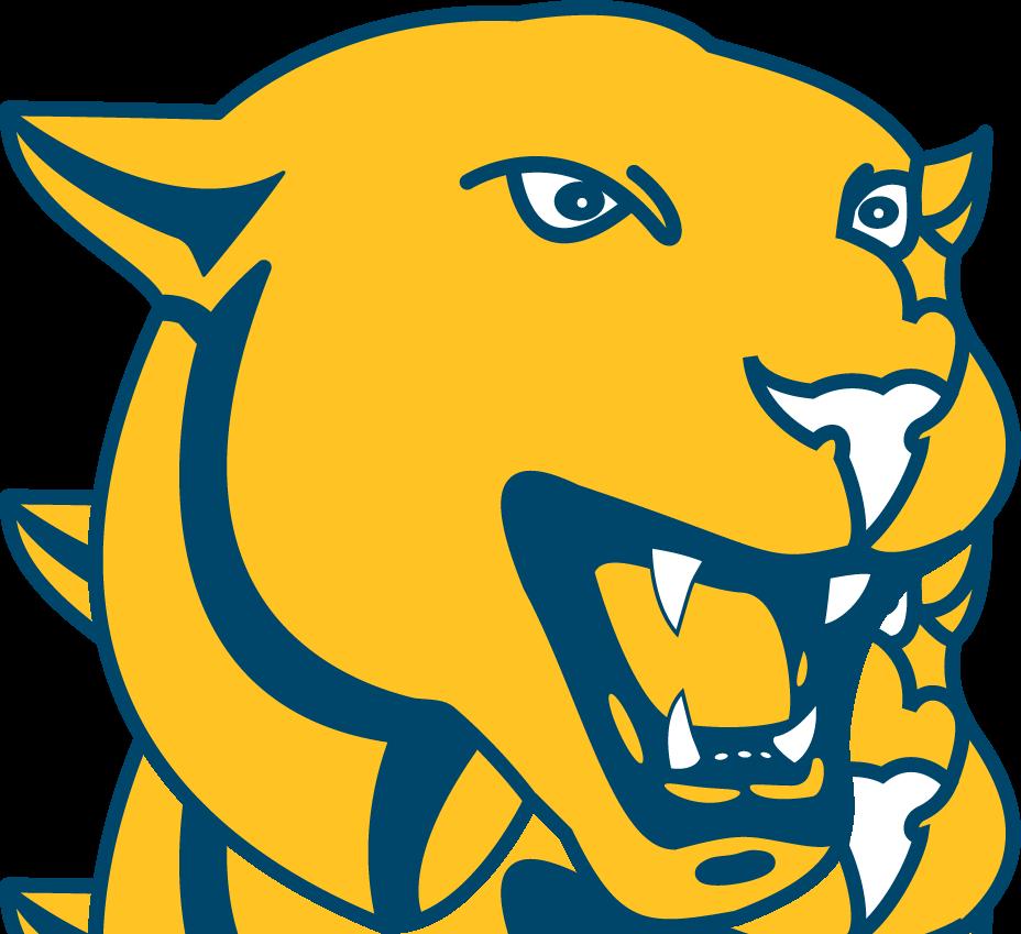 Panther School Logo Panther Logo